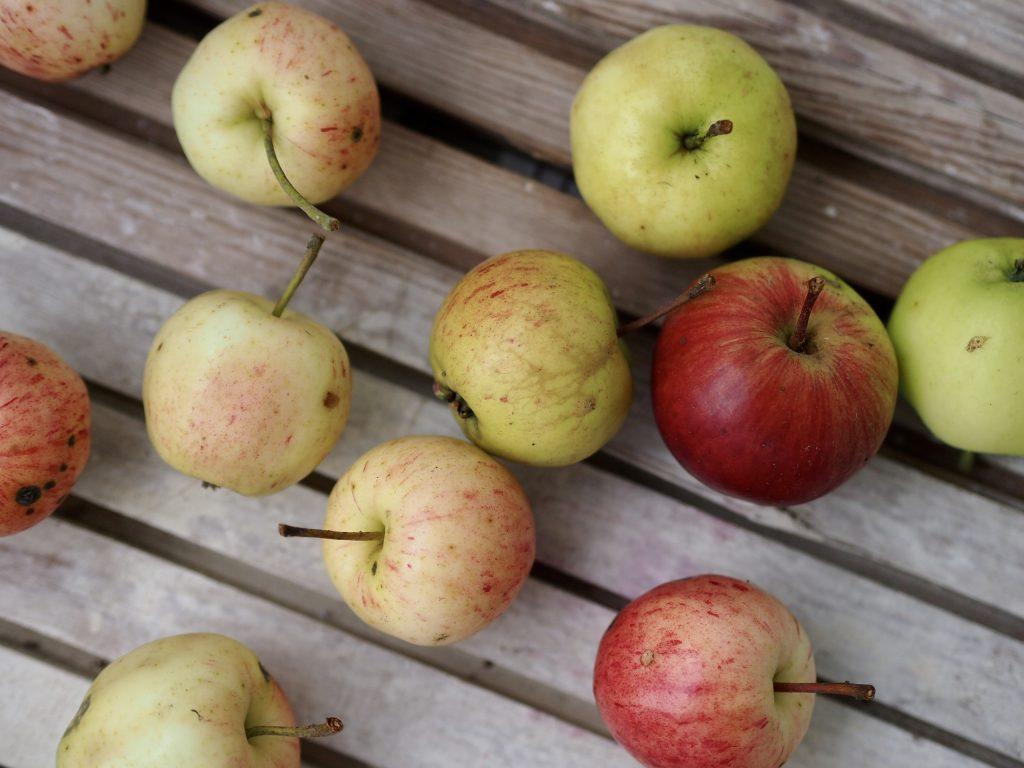 omenapaistos