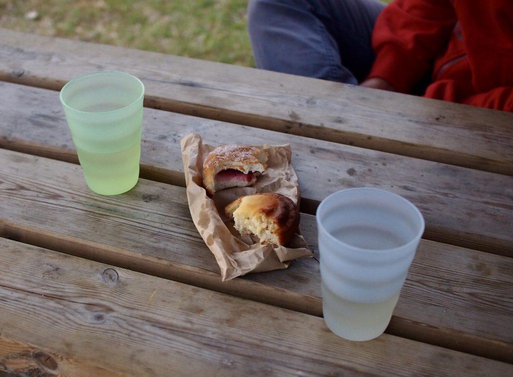 vallisaari piknik